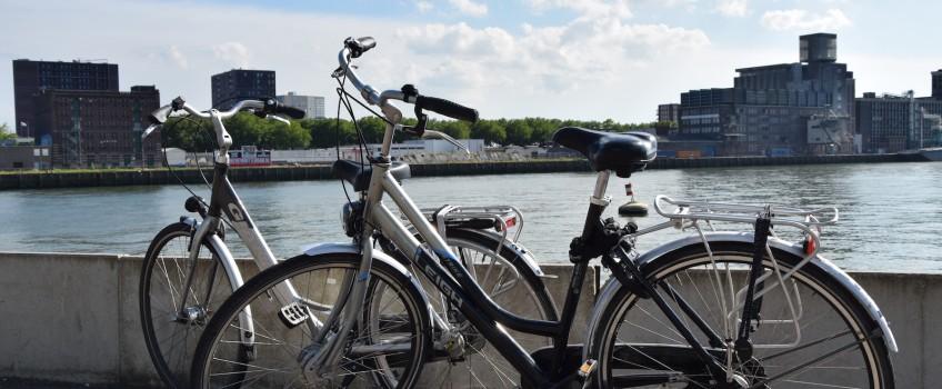 Dia 6 – Bicicletas… Bicicletas Everywhere…!